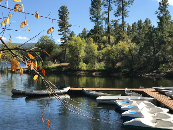 Gold Water Lake