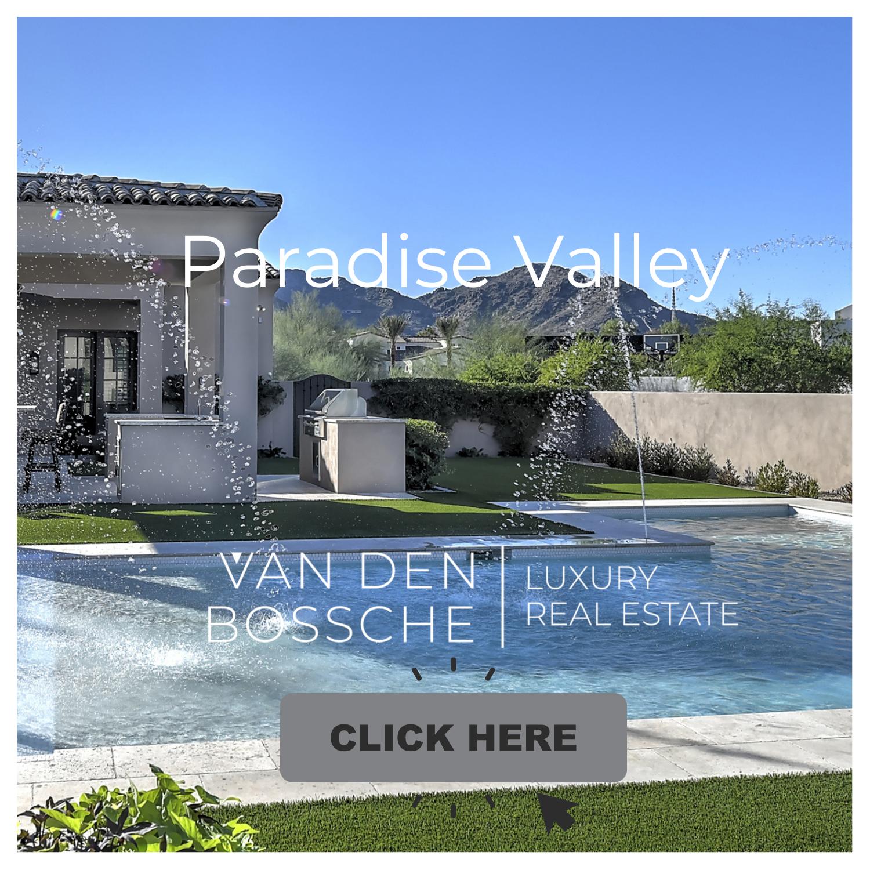 DeniseVDB.com Paradise Valley