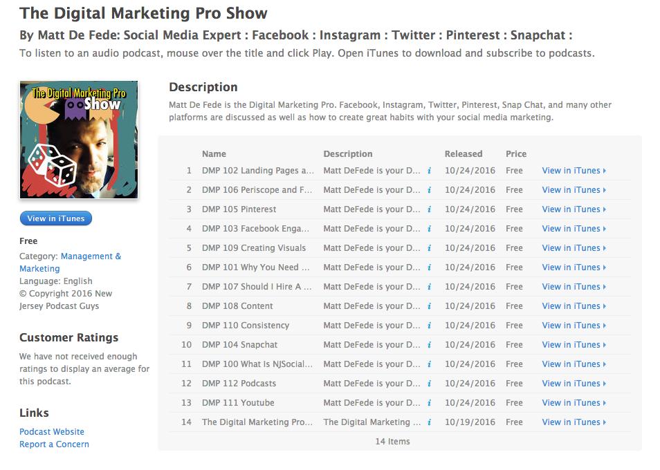 The Digital Marketing Pro Show